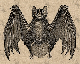 Vintage image Halloween Bat Instant Download Digital printable clipart graphic - scrapbooking,decoupage,burlap,kraft etc HQ 300dpi