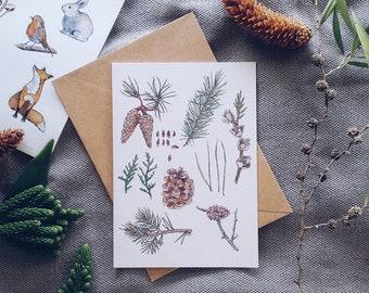 Pine Tree Botanical Illustrated Blank Greeting Card