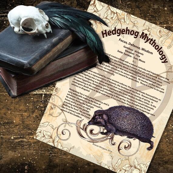 Hedgehog Mythology