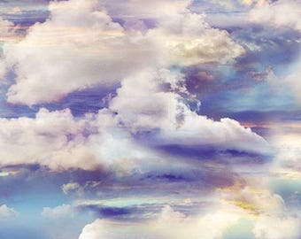 Kanvas Studio - Heaven Sent by Kanvas Studio - Heavenly Sky Multi