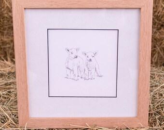 Lambs Framed Original Line Drawing Illustration Print