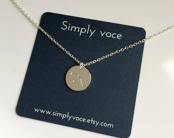 Silver Zodiac Necklace, Constellation Necklace, Astrology Necklace, Zodiac Coin Pendant Necklace, Gift idea