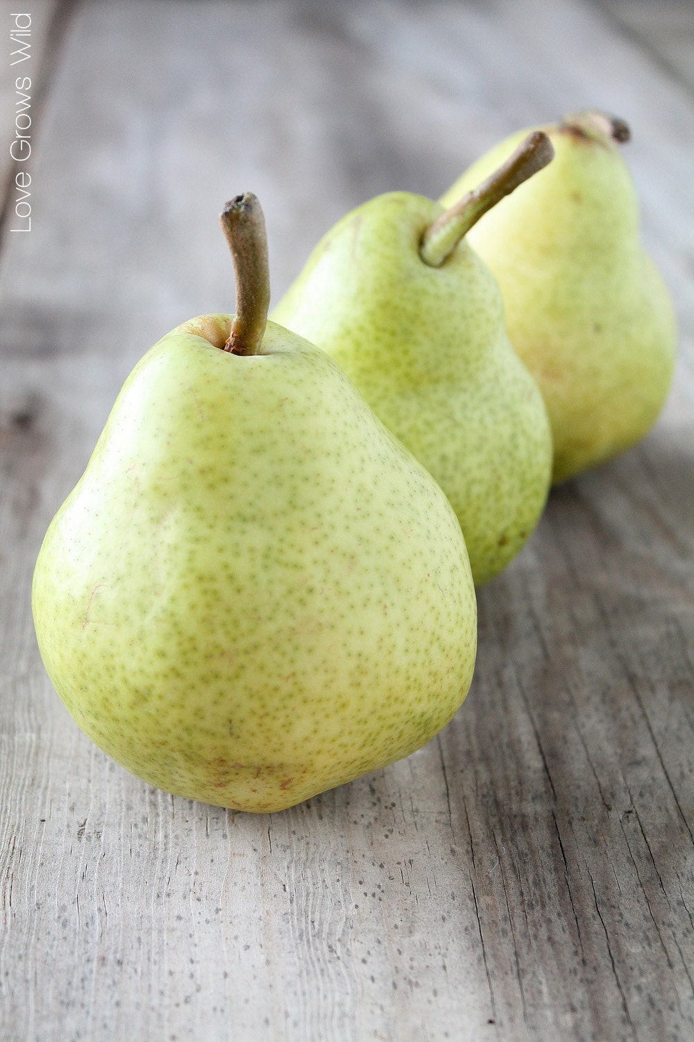 Pear Food Photography Printable Instant Digital Download