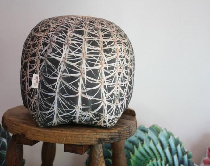 Barrel Cactus pillow made to order