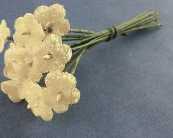Small Pale Yellow Velvet Forget-Me-Not Bouquet of One Dozen Blooms - 12 Blooms - Old Fashioned - FMN     (DR-033)