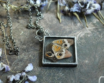 Butterfly Wing Necklace, Ethically Sourced from the shores of the Gulf of Mexico, Buckeye Butterfly, Silver Solder Jewelry