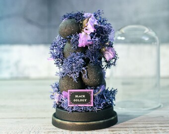 Eggs in Glass Dome -Black Handmade Eggs -Goth Decoration - Cabinet of Curiosities - Birds  -Unusual -Weird - 2.75 x 1.73 inches / 7 x 4,4 cm