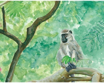 Print of a Vervet Monkey Watercolour Painting