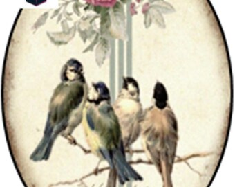 1 cabochon glass 25mm x 18mm vintage birds theme
