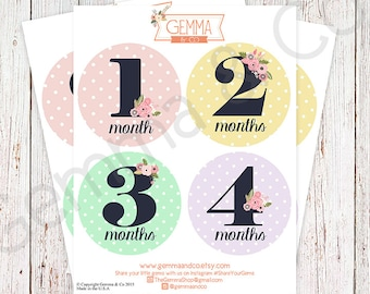 The Olivia | Floral Polka Dot Baby Girl Month Stickers