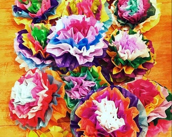 Mexican Paper Flowers Photo Wall Tissue Pom Poms Multicolor - Small