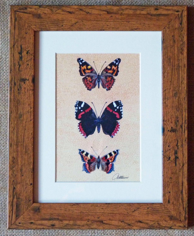 Imagen de la mariposa-mariposa arte imprimir pintado Lady