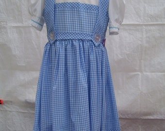 dorothy dress  size 7 child