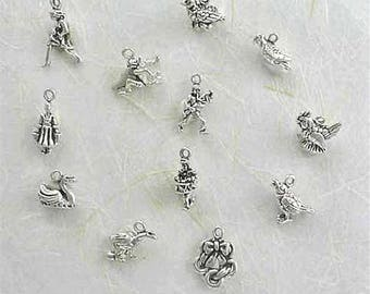 Sterling Silver 3-D 12 Days of Christmas Charm Collection