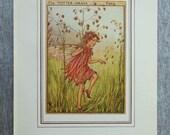 Totter-Grass Flower Fairy...