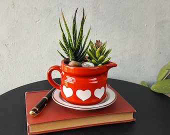 Upcycled Vintage pitcher planter With Drainage Hole and Saucer