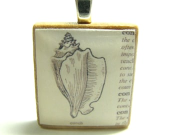 Conch shell drawing - vintage dictionary Scrabble tile pendant