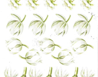 Leaf has cut out, format a5 card 3d js 0107