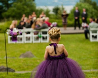 Perfectly Plum Flower Girl Tutu Dress