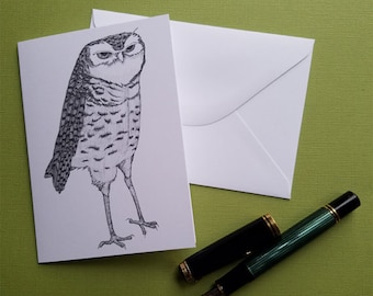 nefarious owl is up to no good paper greeting card note card with envelope 4 x 6