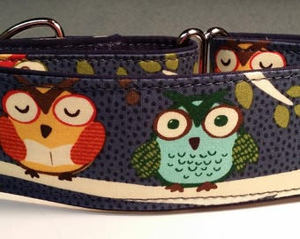 Silly Owls  - 2 Inch Martingale Collar-