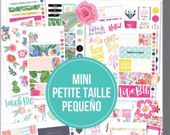 The Happy Planner MINI Value Sticker Pack - Choose Happy