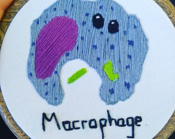 Macrophage in 4 inch frame