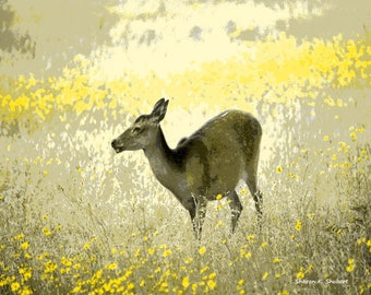 Deer Art, Yellow Gray, Southwestern Woodland Animal, Wilderness Landscape, Home Decor, Office Cabin Wall Hanging, Giclee Print, 8 x 10