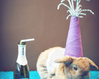 New Years Eve Bunny Print