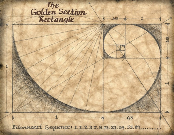 Fibonacci Sequence In Art The Golden Sect...