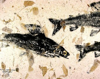 GYOTAKU fish Rubbing Arctic Grayling 8.5 X 11 quality Alaskan Fishing Art Print by artist Barry Singer