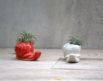 handmade snail air plant holder ceramic air plant planter
