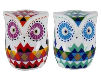 BiggDesign Owl Salt & Pepper Shaker / Birthday / Gift /  For Him / For Her / Present