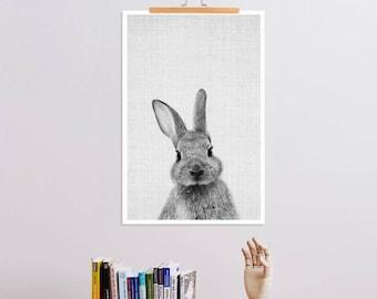 """JUNIQE® Schwarz - Weiß Kinderzimmer & Kunst für Kinder - """"Print 48"""" - Wandbilder und Poster - Tierbilder - entworfen von Lila x Lola"""
