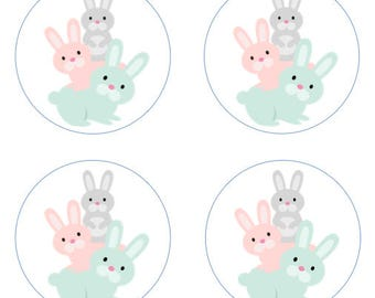 Rabbit Bunny Friends Edible Cupcake Topper Decorations - Set of 12 Toppers