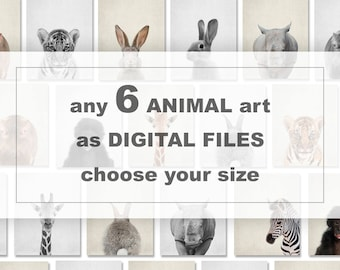 Baby Animal Downloads, Printable Animal Nursery, Choose any 6 ANIMALS from my charts, Forest animals digital, Farm animals download