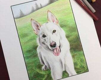 Custom Pet Drawing, Custom Pet Portrait, Portrait Drawing, Drawing of Pet