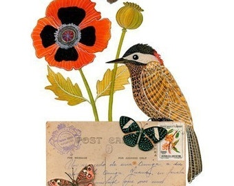 Bird No.32