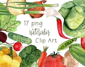 17 Watercolor Vegetables Clip Art