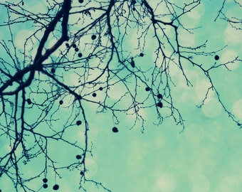 Nature Photography, Tree Photograph, Bare Branches, Antique Blue, Bokeh, Dreamy, Romantic, Vintage Style, Shabby Chic, Woodland, Home Decor