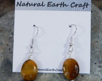 Brown tigers eye earrings jewelry semiprecious stone jewelry packaged in a colorful gift bag 2551