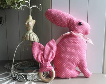 the toy and its pink or blue rattle