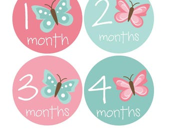12 month stickers- Monthly Stickers- Milestone Sticker- Baby Month Stickers- Baby Girl Month Stickers- Milestone Baby Month Stickers- G05