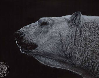 Polar Bear art - Hand signed small fine art print - 'Out of the Darkness'