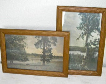 vintage nature prints in gold frames by M L Oakes - San Diego California - cuyamace lake