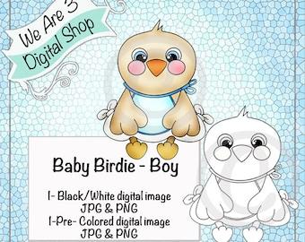 We Are 3 Digital Shop, Baby Birdie Boy,  Pre-Colored Printable, Digital Image, Bird