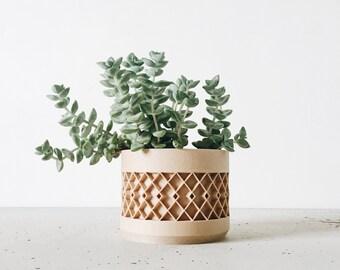 cache pot succulente etsy. Black Bedroom Furniture Sets. Home Design Ideas