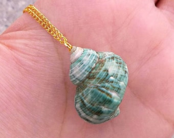 Real Natural Limestone Green Conch Shell Turbo Seashell Snail Hermit Crab Ocean Beach Sea Mermaid Simple Charm Pendant Gold Necklace 23""