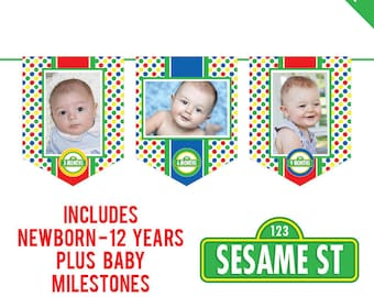 INSTANT DOWNLOAD Sesame Street Party - DIY printable photo banner kit - Includes Newborn through 12 Years, Plus Baby Milestones