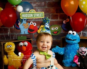Sesame Street Sign with Lamp Post and Cookie Monster character for Photo Shoot 1 Year Birthday Pictures Cake Smash Photos